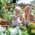 denver urban garden consultant