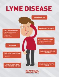 Infografic_111_Lyme_Disease