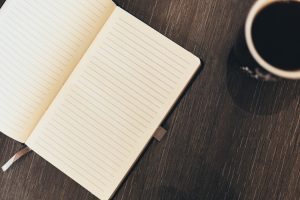 empty journal luis llerena