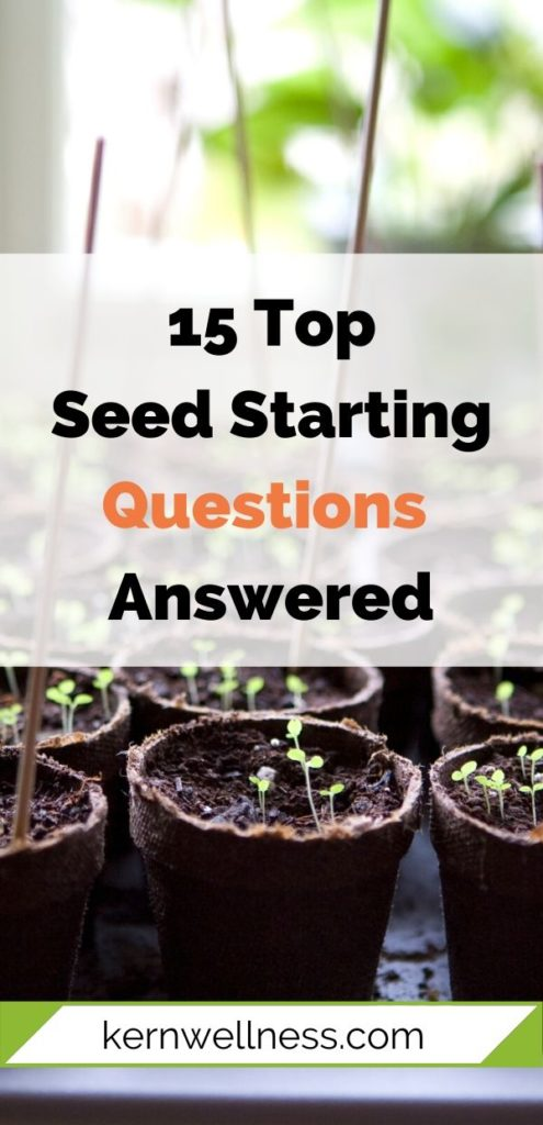 seed starting questions