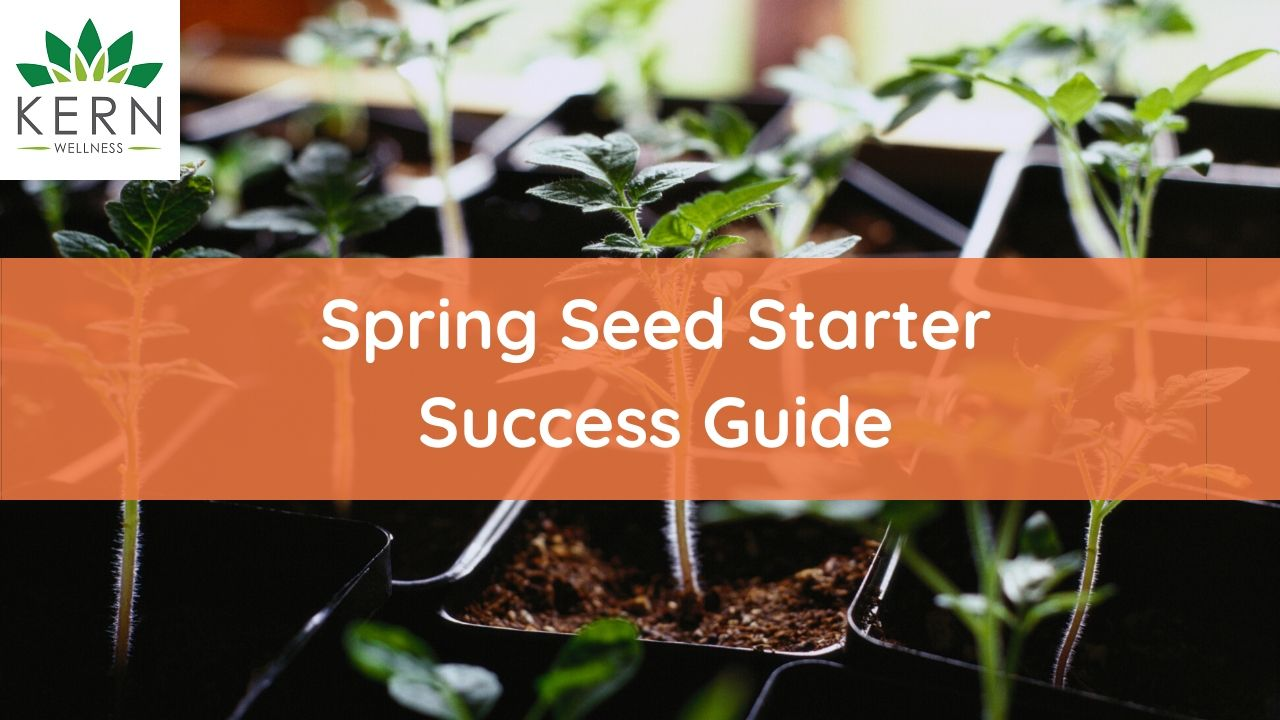seed starter success guide